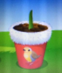 Robin Pot (2)