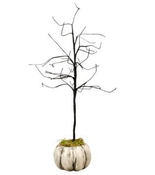 white pumpkin and a scraggly tree (2)