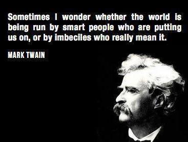 ever wonder - imbeciles - mark twain (2)